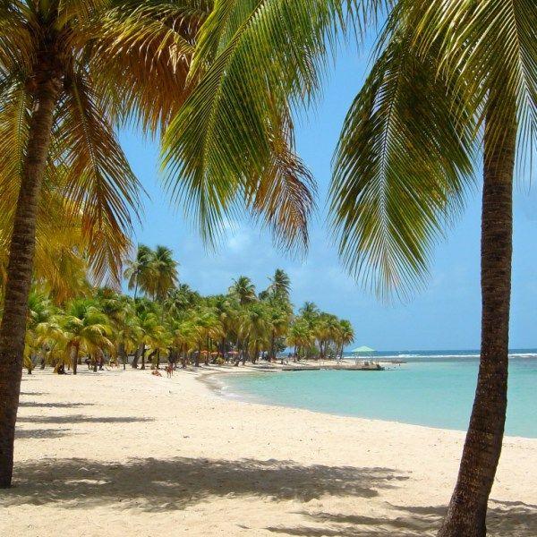 A la découverte de la Martinique …