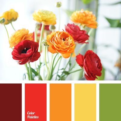 color combination for spring, color of red ranunculus, colour palette for spring, deep green color, green color, maroon color, orange color, ranunculus color, red color, spring colors 2016, yellow color.