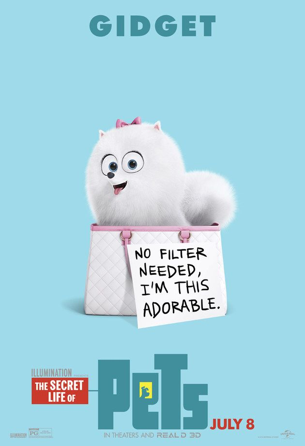 Pets A Vida Secreta dos Bichos (The Secret Life of Pets)
