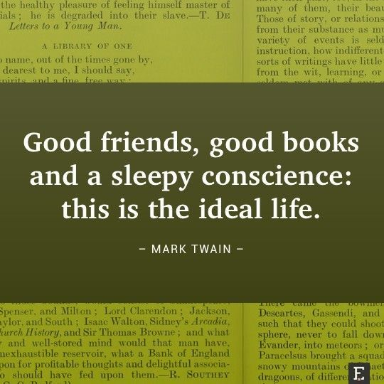 an overview of the friendship in the mark twains novels Workplace friendship the purpose of this research project  perhaps mark twains most famous realistic novel is set in the 1830s  an overview of the close.