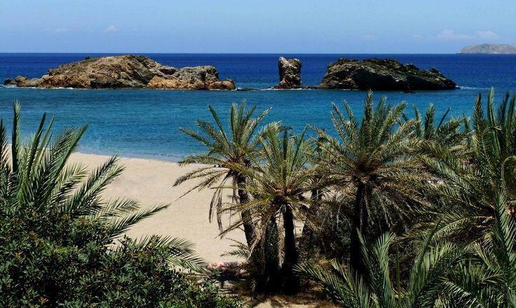 Vai beach, Sitia, Crete, Crete. Way too much fun!