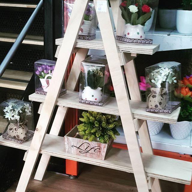 Escaleras decorativa!