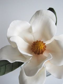 {Nice classic-white Southern Magnolia by the Wicked Little Cake Company}