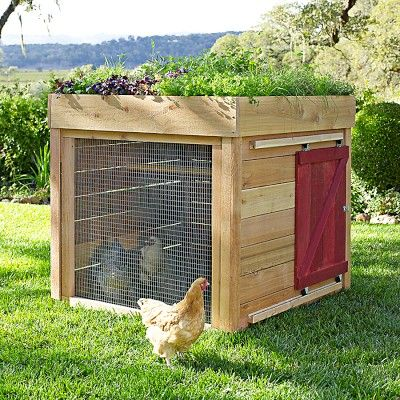 Barnyard Chicken Coop #williamssonoma  I like the sliding door......