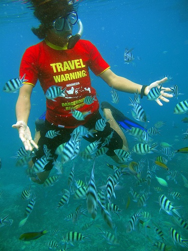 "Come on dude, you got to try this! Just bring bread to feed 'em. ""Feeding Fish at Karimun Jawa Island, Indonesia"""