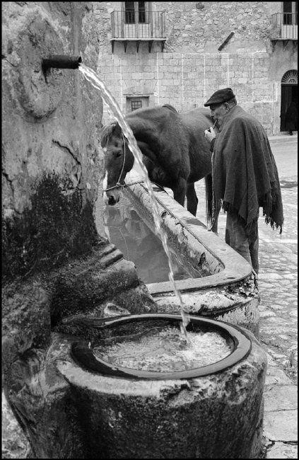Italian Vintage Photographs  ~ Ferdinando Scianna Italy, Sicily, Alimena