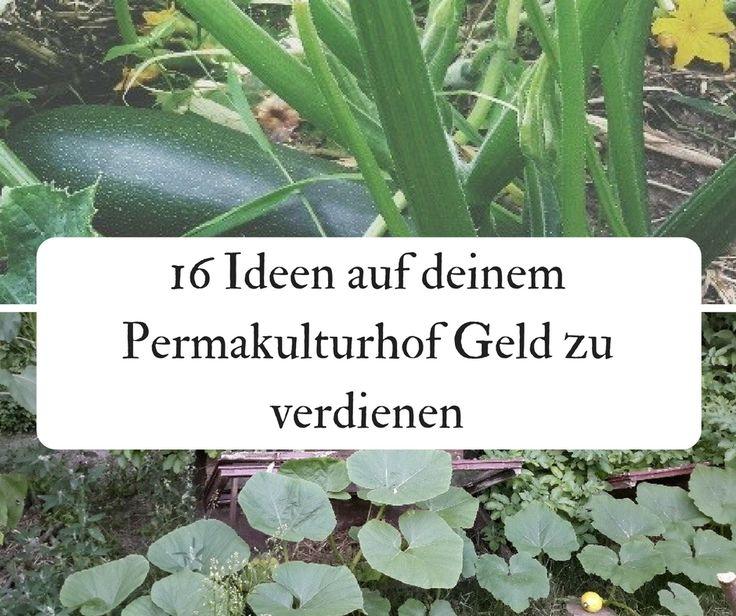 Wie 3 Tage pro Monat Gartenarbeit reichen um meine Familie selbst zu versorgen – Biotopica Farm