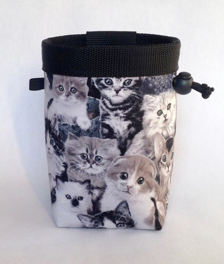 Climbing Chalk Bag, Rock Climbing Chalk Bag, Gift for Climber, Kittens, Cats by knoxmtnbags on Etsy https://www.etsy.com/listing/258628414/climbing-chalk-bag-rock-climbing-chalk