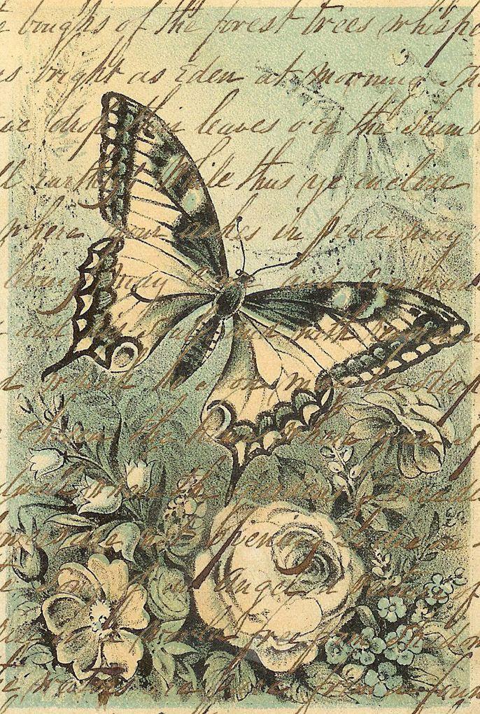 Imágenes vintage gratis / Free vintage images: Fondos vintage mariposas y letras