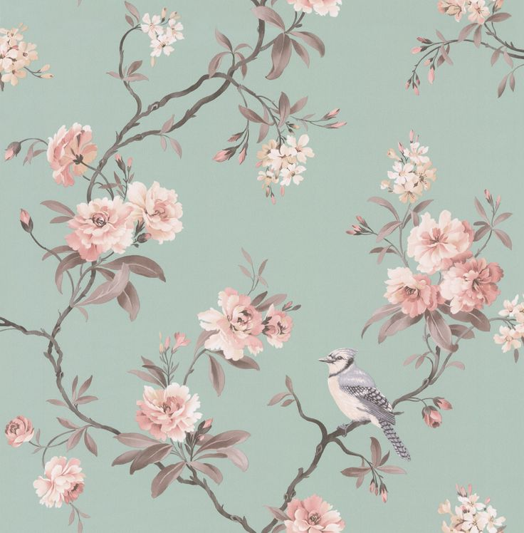 Best 25+ Bird wallpaper ideas on Pinterest