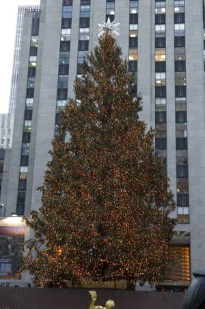 December in New York City Weather and Event Guide: Rockefeller Center Christmas Tree