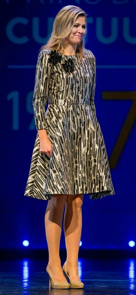 Queen Maxima of The Netherlands presents the award from the Prince Bernhard Culture Price 2015 (Prince Bernhard Culture Fund) at the Muziektheater on November 30, 2015 in Amsterdam.