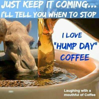 I Love Hump Day Coffee good morning wednesday hump day humpday hump day camel wednesday quotes happy wednesday wednesday quote happy wednesday quotes funny wednesday quotes wednesday coffee quotes good morning wedneday
