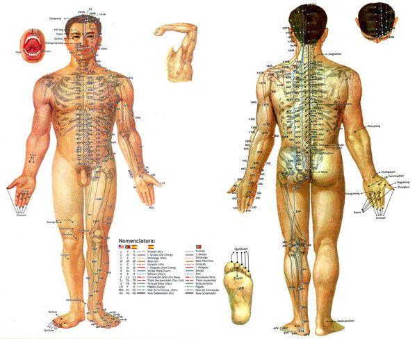 Традиционная китайская медицина - bambumasajes Jimdo-Page!