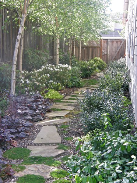 TIPS FROM A GREEN THUMB  A side yard (the long, narrow strip of grass next to the home) is often under-utilized in people's landscaping vision. You can spice this area up by turning it into scenic pathway. If the side yard is wide enough, you can also add some flower beds on either side of the path to accentuate the walkway.