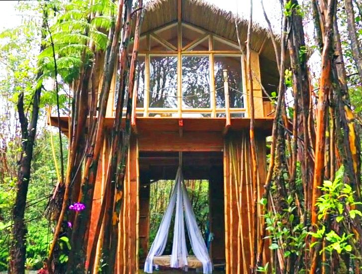This tiny off-grid Hawaiian home cost just $11,000 to build | Inhabitat - Sustainable Design Innovation, Eco Architecture, Green Building