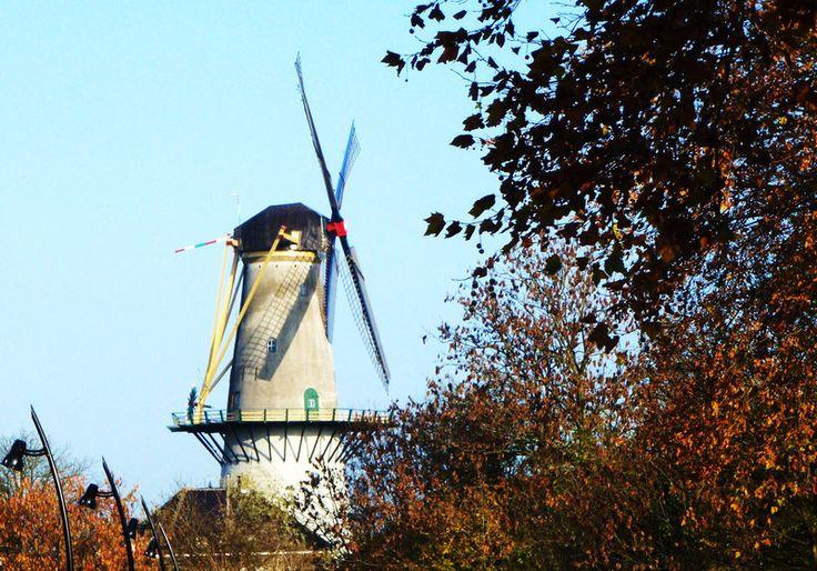 Spijkenisse, Netherlands