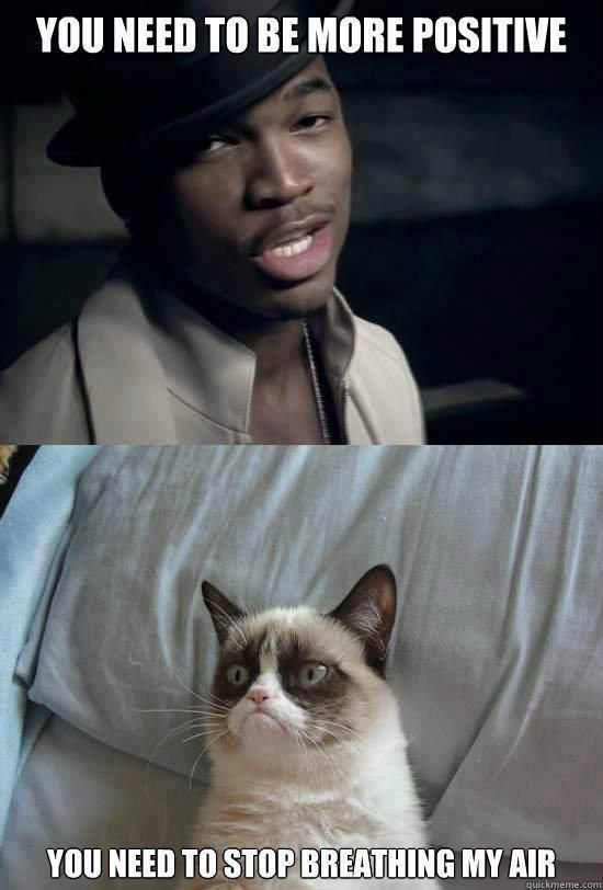 Grumpy Cat ...For more sarcasm quotes and funny insults visit www.bestfunnyjokes4u.com/rofl-funny-pic-of-the-day-8/
