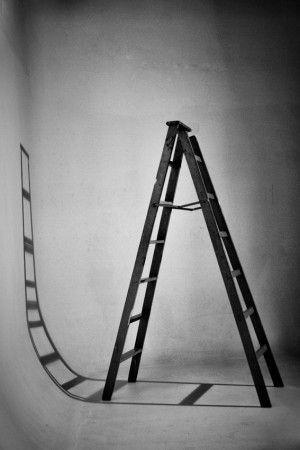 Curves, Straight Lines by Javã Társis