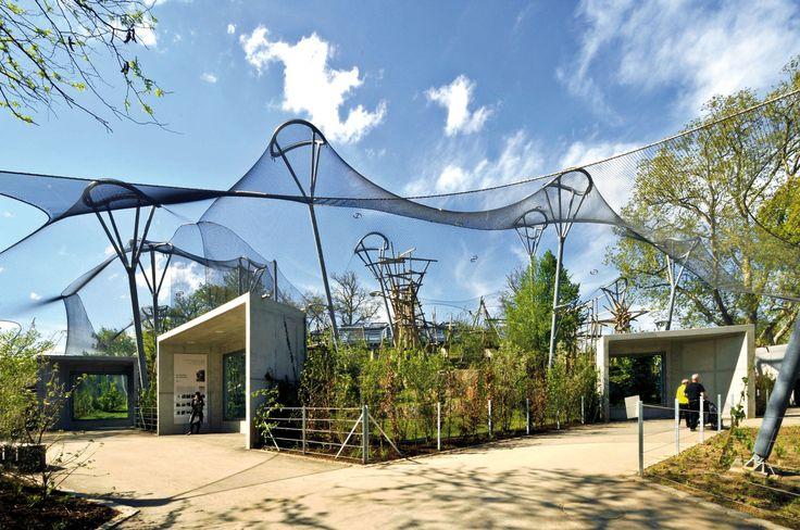 HASCHER JEHLE Architektur · ENCLOSURE FOR AFRICAN APES · Divisare
