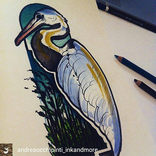 @Regrann_App from @andreaocchipinti_inkandmore -  #newtraditional #newtraditionaltattoo #sketch #Heron #Airone #drawing #illustrate #illustration #design - #regrann