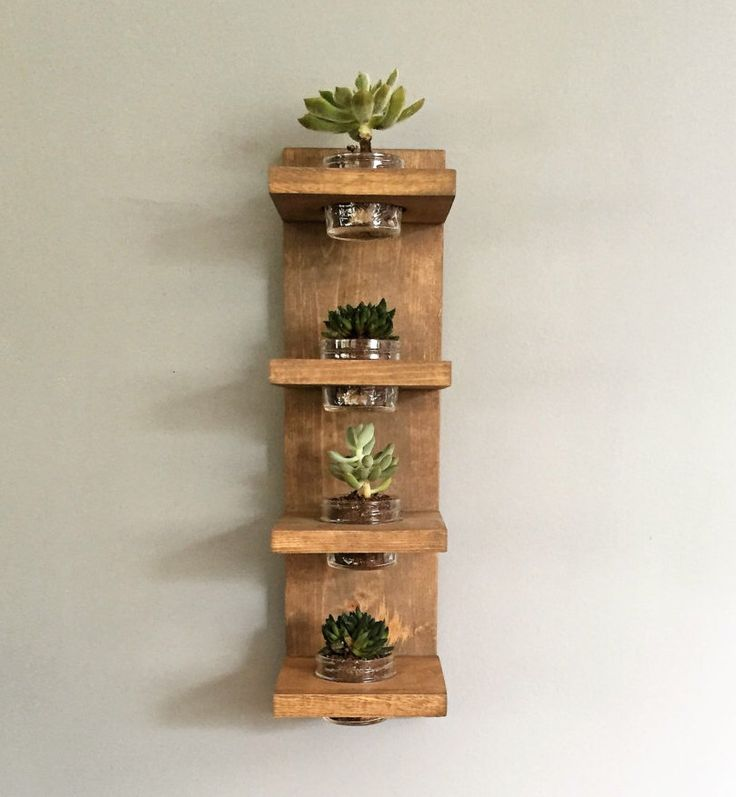 Best 25 indoor wall planters ideas on pinterest herb for Indoor plant gift ideas