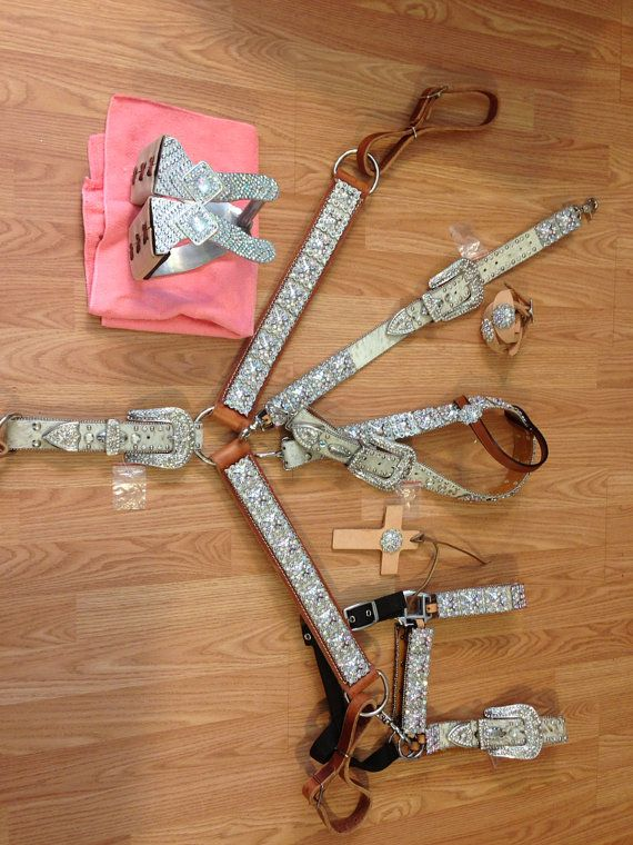 AB bling belt style horse size package deal