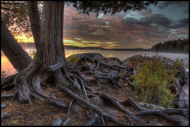 Algonquin Park - Smoke Lake at dawn
