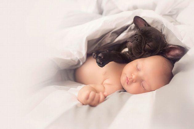 「いつも一緒だよ」同じ日に生まれた赤ちゃんと子犬は、親友になった。(画像集)