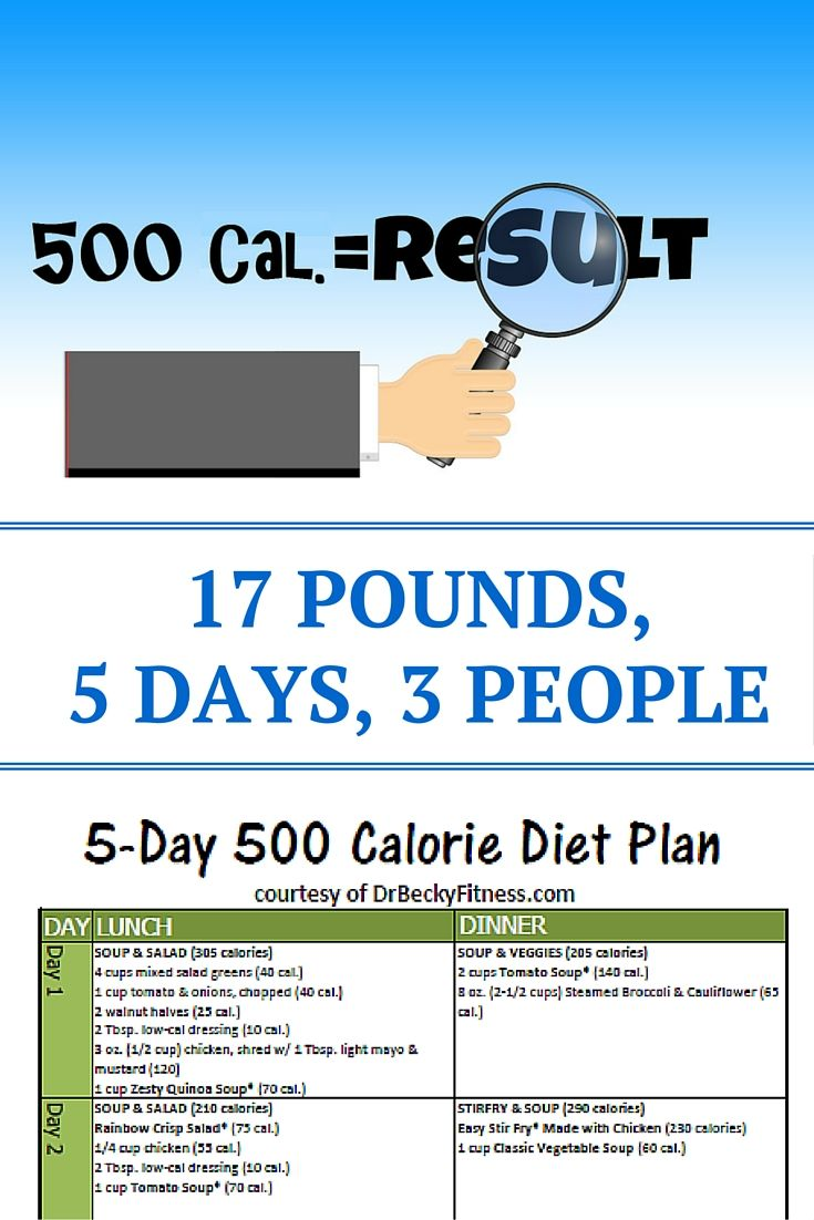 I'm A College Health Professor. For 5 Days My Family Ate 500 Calories, Here's What Happened, And Why We Loved The Results.
