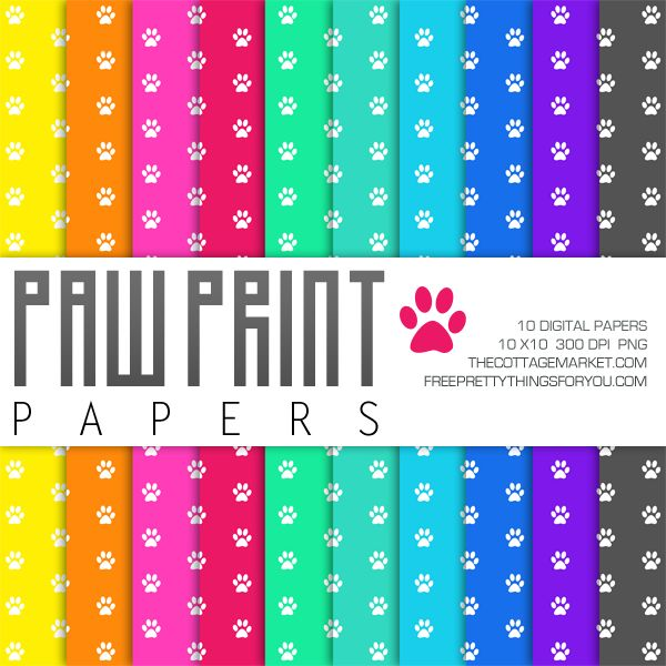 1000 images about dog theme paw print classroom on pinterest for Themed printer paper