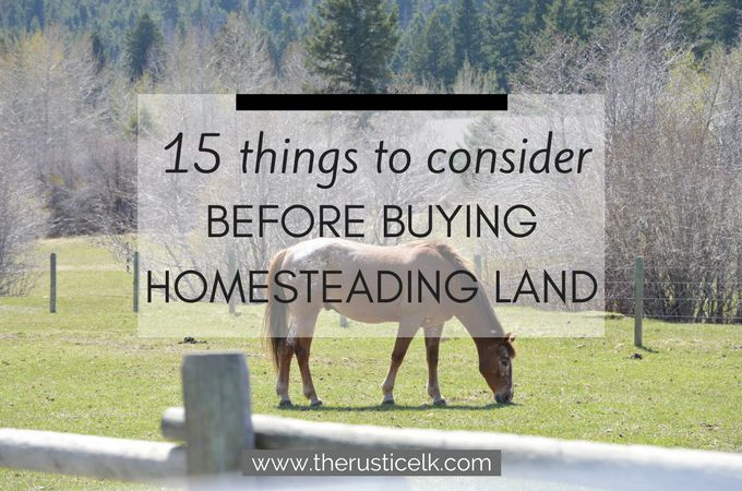 Wondering what to look for when buying homesteading land? Here are 15 questions to ask on your hunt to find the perfect fit!