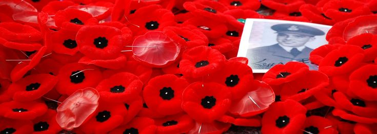 We used this article to help explain Remembrance Day (Veterans Day in the US) to our children.