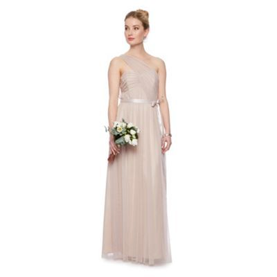 Debut Rose 'Lupin' mesh one shoulder maxi dress with ribbon- at Debenhams.com