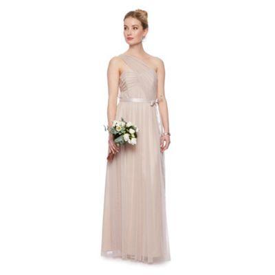 Debut Rose 'Lupin' mesh one shoulder maxi dress with ribbon- at Debenhams.com