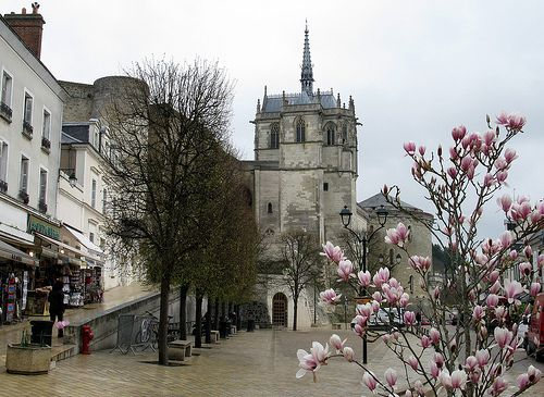 Amboise - This town, host to da Vinci in his later years, retains its Italian Renaissance influence with its royal castle and gardens.