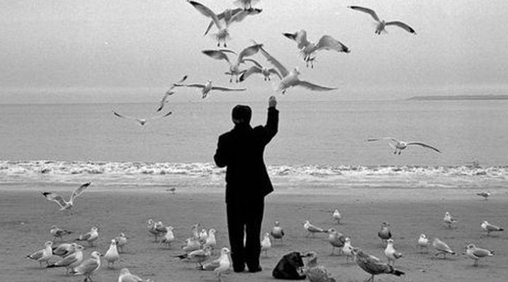 """Algumas pessoas pensam em """"estar sozinho"""" como uma coisa ruim. Conheça 10 benefícios que a solidão pode trazer a sua vida"""