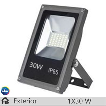 Proiector LED, antracit, 30W, lumina rece
