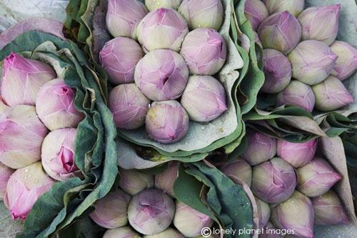 Lotus flowers for sale at Pak Khlong market canvas print   Canvas Art Prints