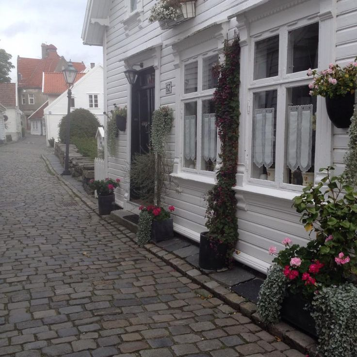 Visit the old part of town while you're here! 173 white wooden houses with beautiful flowers. #regionstavanger #norway #stavanger