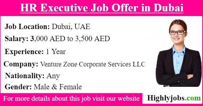 Hr Executive Job Offer In Dubai Executive Jobs Job Offer Job Hunting