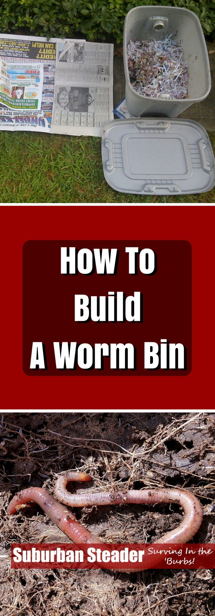 Interested in adding livestock to your suburban homestead but not sure how to do it? How about starting with worms - and building a worm bin! Find out how!