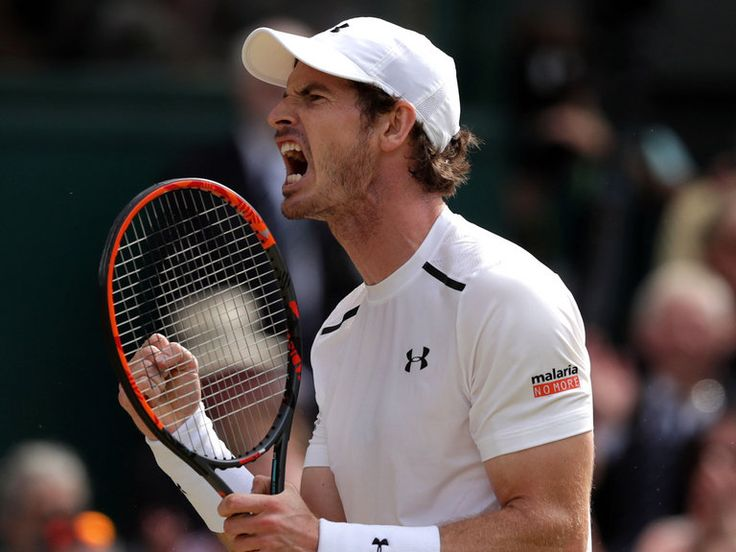 Andy Murray set to miss cup tie