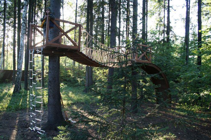 полоса препятствий на деревьях