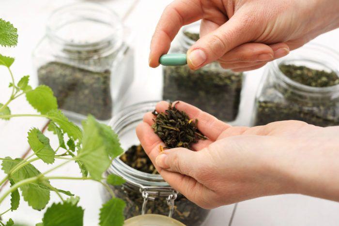 Pin Di 3 Pilihan Obat Herbal Untuk Bantu Mengatasi Gejala Osteoporosis Bye Royalty Cosmetic