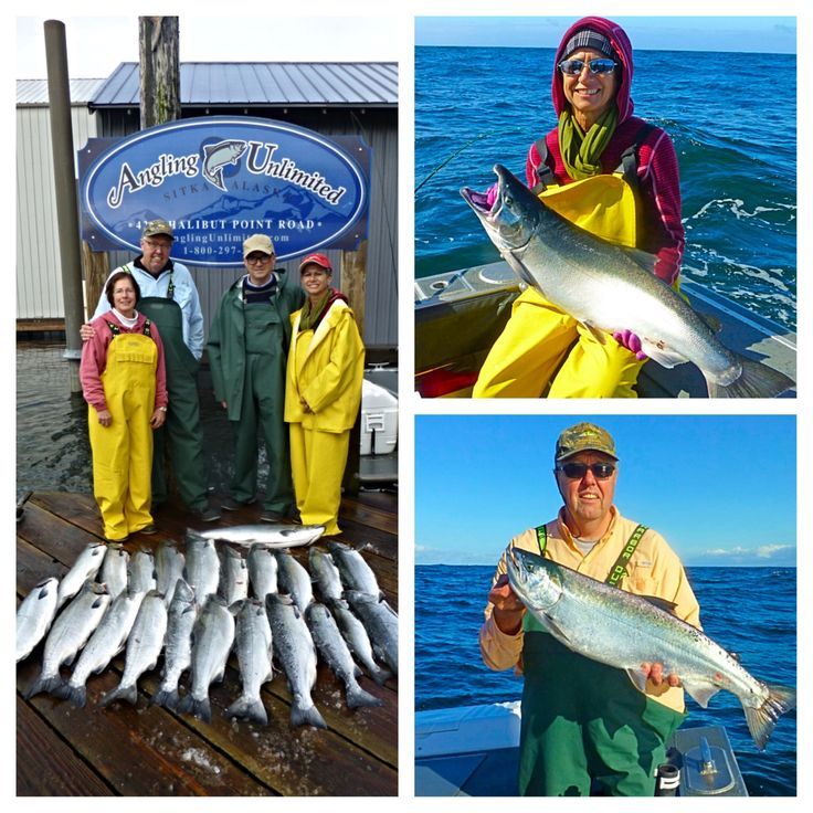 Sitka Fishing Report 9/5: The Holten and Kratz parties recently fished with Captain Tom and experienced the phenomenal silver fishing of late-August and early September. Read about their trip in our latest Sitka fishing report.