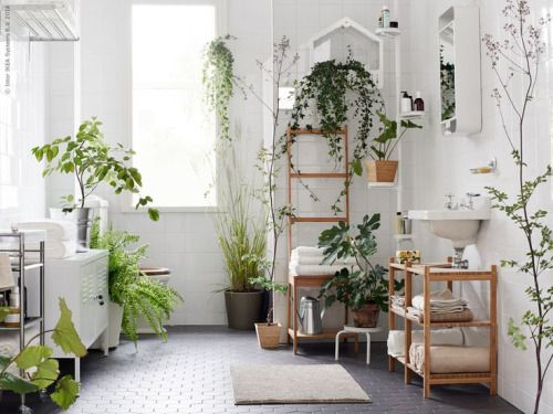 An all white space with natural wood and copious plant - Salle de bain pinterest ...