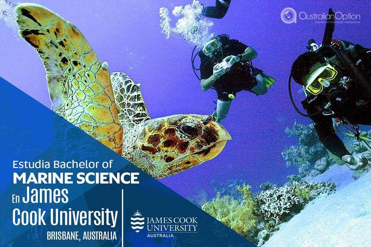 Estudia Bachelor of Marine Science en James Cook University en Brisbane,Australia.   Nuestra Licenciatura en Ciencias del Mar te califica para ser un cuidador de los océanos del mundo, la gestión de impacto humano y la preservación de los ambientes marinos dinámicos.  El programa de Licenciatura en Biología Marina tiene como objetivo formar investigadores con conocimientos sólidos y actualizados en el área de la biología marina, con un fuerte componente de actividades práctica.