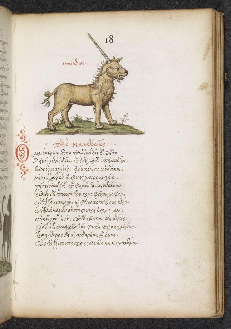 Miniature of a unicorn, in Philes, De natura animalium (France, 16th century): London, British Library, MS Burney 97, f. 18r.