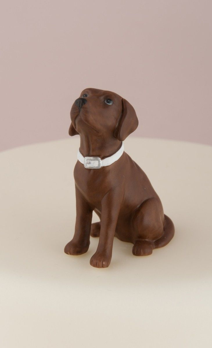 german shorthaired pointer wedding cake topper 25 best ideas about cake topper on 14674